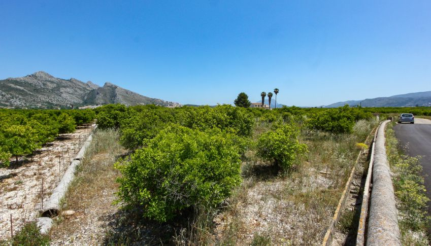 Sale - Plot - Sagra